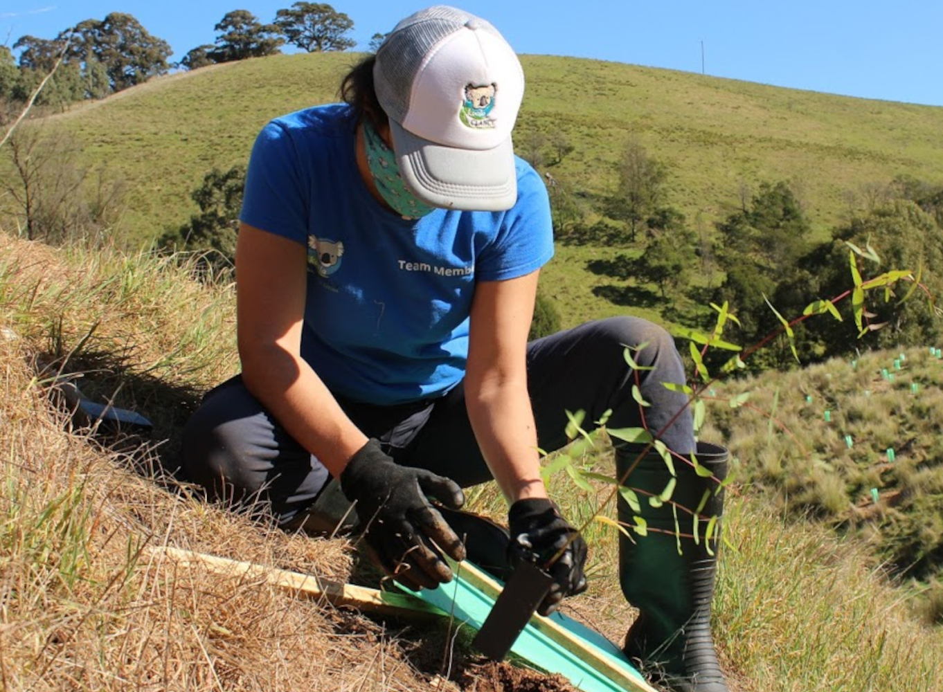 conservation action