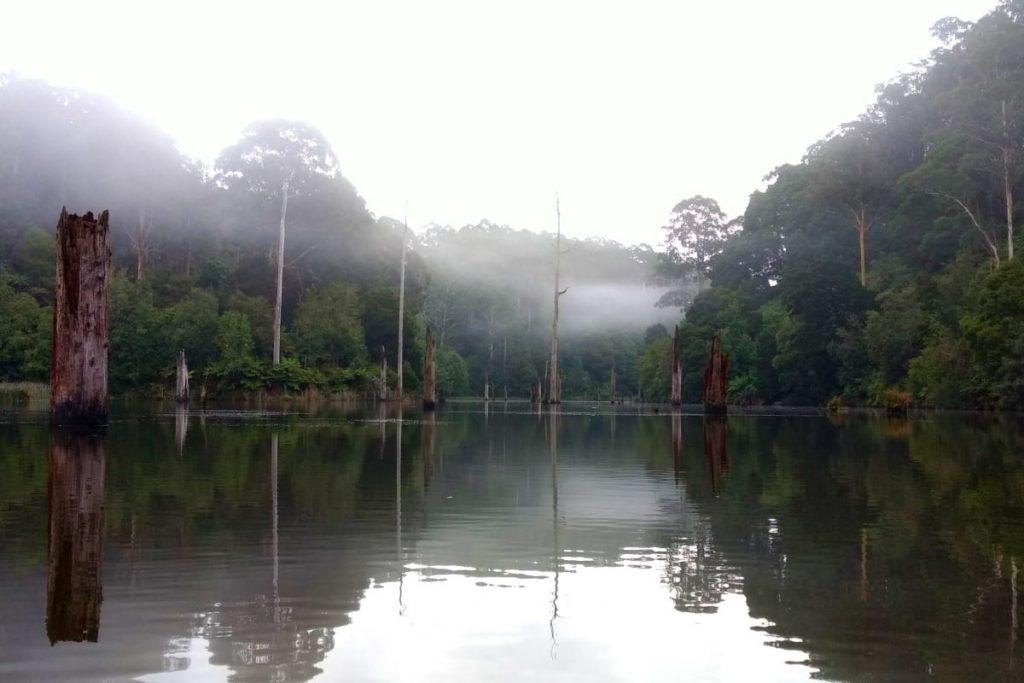 lake-elizabeth-platypus-paddle