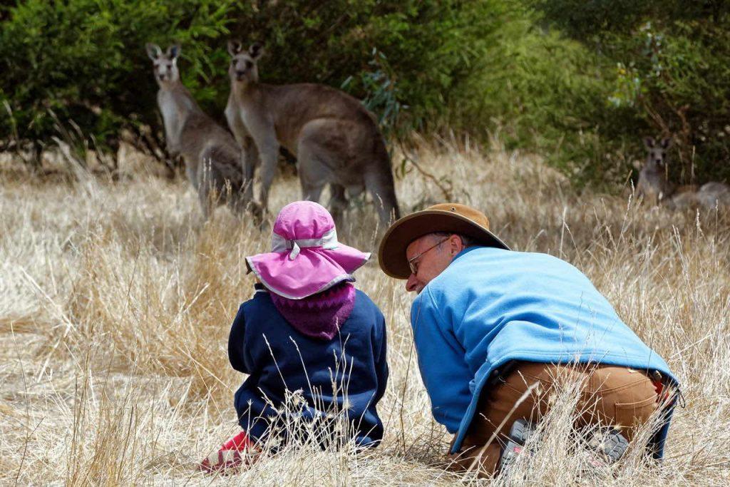 kangaroos-child-roger